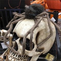 As if giant skulls were not enough, this Attack of the Giant Halloween Spiders kicks the display up yet another notch. It is a visual merchandising surprise Halloween Spider, Spiders, Visual Merchandising, Insects, Lion Sculpture, Retail, Statue, Art, Art Background