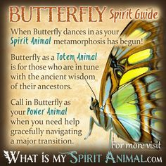 Hundreds of in-depth Spirit, Totem, & Power Animal Meanings! Learn the spiritual symbolism and meaning of your Animal Spirit Guide, Totem, & Power Animal! Butterfly Spirit Animal, Spirit Animal Totem, Butterfly Quotes, Animal Spirit Guides, Your Spirit Animal, Dragonfly Quotes, Animal Meanings, Animal Symbolism, Butterfly Symbolism