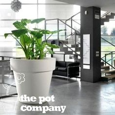 Plastic The Standard One Fiori Large Pot Planter