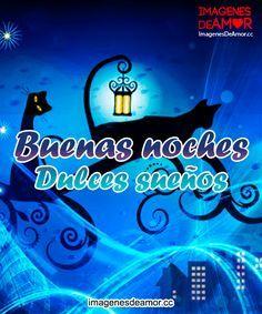 Gatos paseando en la noche y frase: Buenas noches. Dulces sueños.