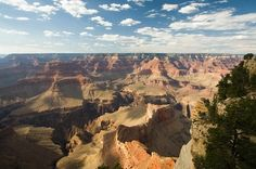 Arizona is a wonderfully diverse state, with an abundance of open space and unforgettable scenery. Here is the Arizona Road Trip destinations. Grand Canyon Arizona, Grand Canyon Lodging, Arizona Usa, Flagstaff Arizona, Canyon Utah, List Of National Parks, Arizona National Parks, Arizona Road Trip, Parque Nacional Do Grand Canyon