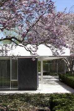 modern design by moderndesign.org : Eero Saarinen Miller House