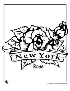 state flower coloring pages new york state flower coloring page classroom jr