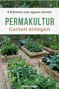 Backyard Vegetable Gardens, Veg Garden, Green Garden, Edible Garden, Hippie Garden, Light Purple Hair, Architecture Student, Growing Vegetables, Garden Inspiration