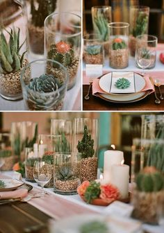 Cacti in vases with sand for low centerpieces
