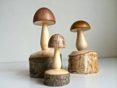 Turned mushrooms.                                                                                                                                                     More