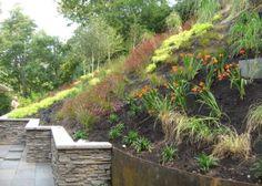 steep backyard ideas...this hill looks like mine! :(