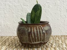 Ceramic Planter  Succulent Pot  Wheelthrown by QueenBeePottery