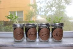 This Adorable Little Kit Just May Be The Answer To My Herb Garden Problems | xo jane