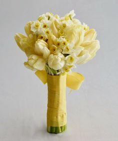 śliczne te tulipanki