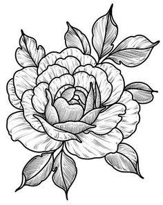 Flower Art Drawing, Flower Sketches, Floral Drawing, Drawing Sketches, Et Tattoo, Tattoo Drawings, Art Drawings, Flower Tattoo Designs, Flower Tattoos