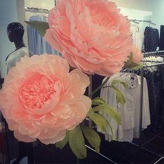 Последний заказ перед отпуском!!!☀️ #бумажныецветы #пионы #ростовыецветы #оформлениевитрин #воронеж #арендадекора