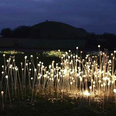 """Bruce Munro. Field of Light.    """"There are so many really nice light sculptures/art installations out already, but Lighting designer Bruce Munro shows that there are never enough. And that they keep getting even more beautiful.    Munro´s famous Field of Light (an apppropriate name) will be shown at the Eden Project in Cornwall, England, this winter. It was inspired by the way the desert flowers after a rainstorm."""""""