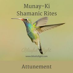 The Munay-Ki Shamanic Rites online home study attunement course teaches a thorough selection of energetic self-development and spiritual tools to help you step out of the past and to build the present and future in a more constructive and empowering way.
