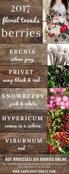 DIY Berry Bouquet Trends! www.fabulousflorals.com The #1 source for wholesale DIY wedding flowers! #weddingflowers #diyflowers #diywedding #berries #diybride #berrybouquet