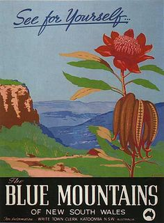 waratah poster. The Blue Mountains of NSW. by Henry Rousel (c. 1949)