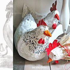 seidenfeins Blog vom schönen Landleben: die ersten Hühner * my first hens