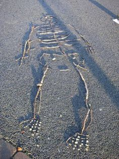 Making skeletons (using sticks) | Creative STAR Learning | I'm a teacher, get me OUTSIDE here!