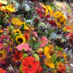 A vibrant rainbow of colors in our 10th & Reed store. #ACMEMarkets #flowers