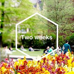 It's just two weeks until our 14 September open day. Register now at www.leeds.ac.uk/opendays #LeedsOpenDay