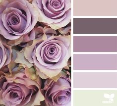 Trendy Badezimmer Pink Grey Design Seeds by Design Seeds, Colour Pallette, Colour Schemes, Color Combos, Color Combinations Home, Colour Match, Color Balance, Deco Design, Color Swatches