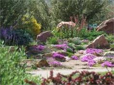 Xeriscape demo gardens at Colorado Springs Utilities