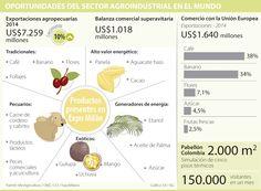 Colombia puede llevar su producción agraria a 61,2 millones de toneladas