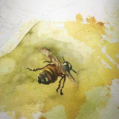 2015 Nancy Murphree Davis nmdART.com Bee, Watercolor, My Love, Artwork, Painting, Instagram, Pen And Wash, My Boo, Watercolour