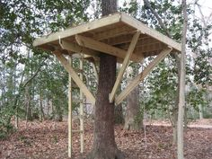 Creative Bedroom:Treehouse Designs How To Build Treehouse Designs Tree Houses 2jpg