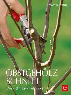 Obstgehölzschnitt - Die richtigen Techniken von Martin Stangl,  blv Verlag