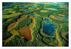The Pantanal swamp in southern Brazil - Less well-known than the Amazon rain forest, this mighty wetland is at certain times of year larger than England, well over 100,000 sq km during the rainy season. From December to May, 80% of the area is flooded, and is almost 10 times the size of Florida's Everglades