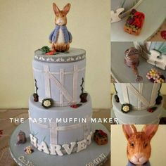 My nephews Peter rabbit cake ,all hand made no moulds and a strawberry and white chocolate cake .