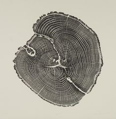 Bryan-Nash-Gill-Woodcut-Black-Oak.jpg (1024×1051)