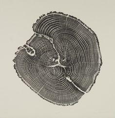 Bryan-Nash-Gill-Woodcut-Black-Oak.jpg (1024×1051)