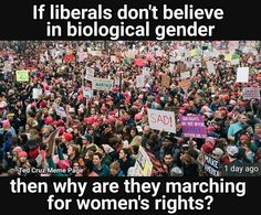- If liberals don't believe in biological gender then why are they marching for women's rights? Liberal Hypocrisy, Liberal Logic, Stupid Liberals, Liberal Left, Socialism, Politicians, Ted Cruz Meme, Out Of Touch, Conservative Politics