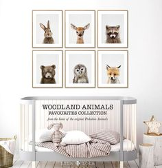 Our cutest and most popular set of six Woodlands Animal Prints, available to download in over 20+ standard picture sizes. Download your files, print at home, at your local print shop, or upload the files to an online printing service, frame and hang! To choose your own six animals, add