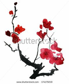 Watercolor blossoming branch of cherry. - stock photo