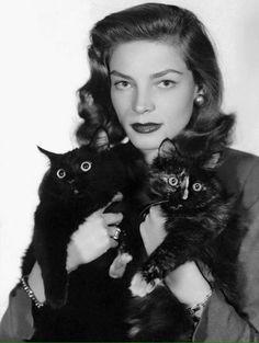 Lauren Bacall, Lauren Bacall cats, #LaurenBacall                                                                                                                                                      More