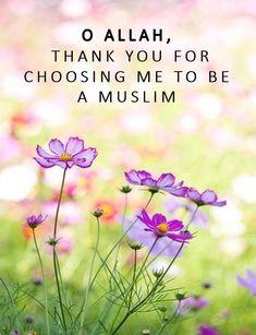 Alhamdulillah, Hadith, Oh Allah, Imam Ali, Self Reminder, Quran Verses, Islamic Pictures, Islam Quran, Qoutes