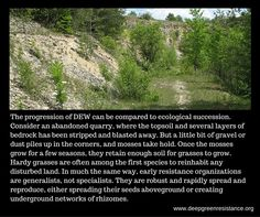 Implementing Decisive Ecological Warfare (DEW)