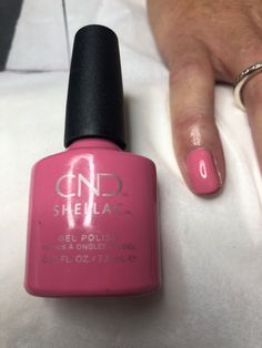 Brighton nail tech Shellac Manicure, Nails, Nail Tech, Gel Polish, Brighton, Facebook, Ongles, Gel Nail Varnish, Manicure Ideas