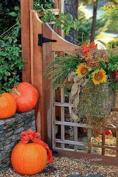 Garden Gate & Pumpkins