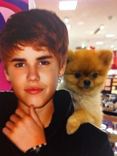 Bieber and Jiff, the Pom