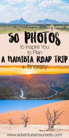 13 fascinating destinations not to miss in Namibia. From the most famous landmarks like Sossusvlei and Etosha Natinonal Park to some fascinating hidden gems - these are our favourite places to see in Namibia. Safari, Africa Destinations, Travel Destinations, Travel Tips, Travel Books, Travel Journals, Travel Essentials, Cape Town, Kenya