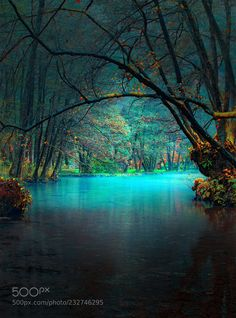 River (Mevludin Sejmenovic / Sarajevo / Bosnia and Herzegovina) #Nikon D610 #landscape #photo #nature