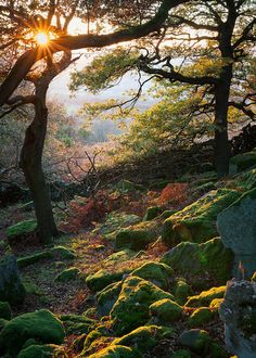 Gardom's Edge, Peak District National Park near Derbyshire,    England <3