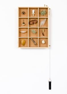 """Known as the Object Calendar, the cabinet's 12 compartments """"each represent a month of the year, and can be used to document seasonal changes with found objects"""" says Rupert. It's made of English ash with hand-cut dovetails and a cork backing. You supply the curiosities."""