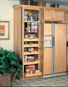 Image from http://www.yorkcabinetry.com/gallery/imageResizer.asp?i=/gallery/images/large/PantryCabinet2.jpg&w=500.