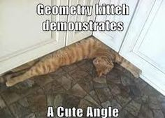 geometry kitty