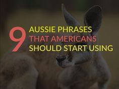 9 Aussie Phrases That Americans Should Start Using